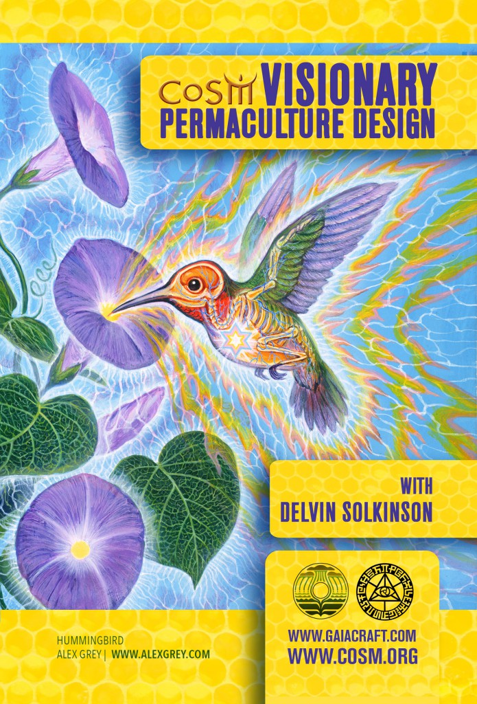 visionary_permaculture_flier_edit_frontWEB