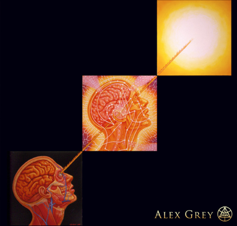 Boulder S Integral Center A Talk With Alex Grey And