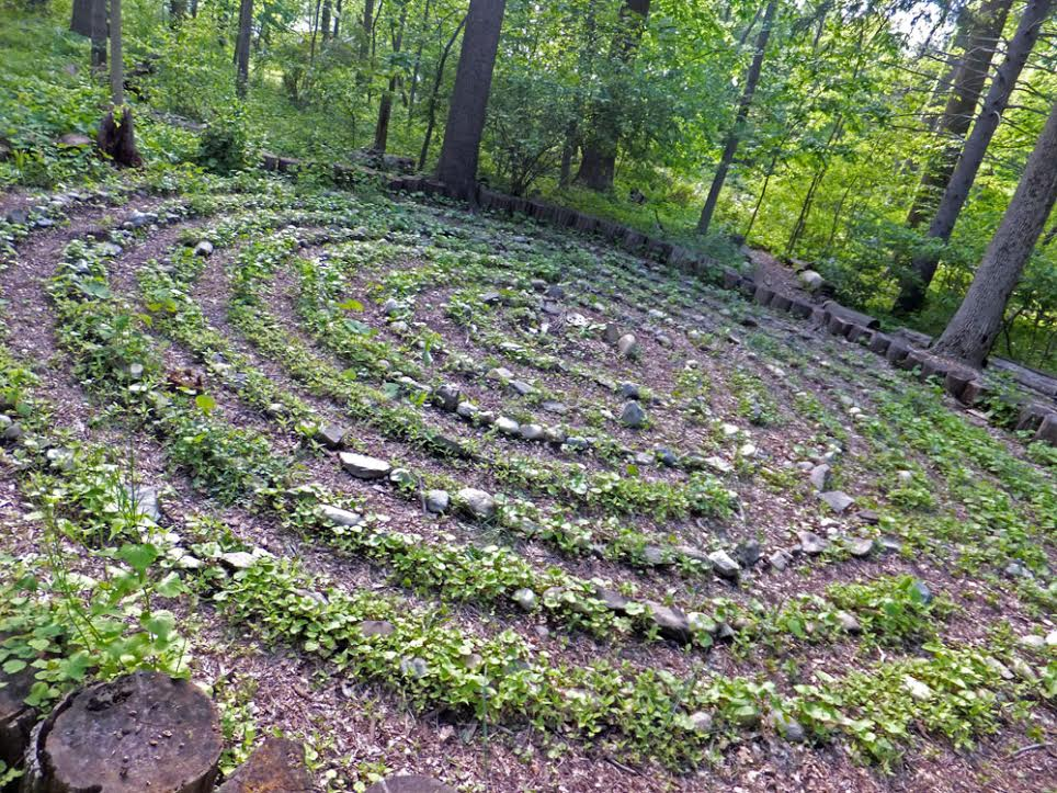 Visionary Permaculture - labyrinth OS Gaia with Delvin and Grace February 5 cosm